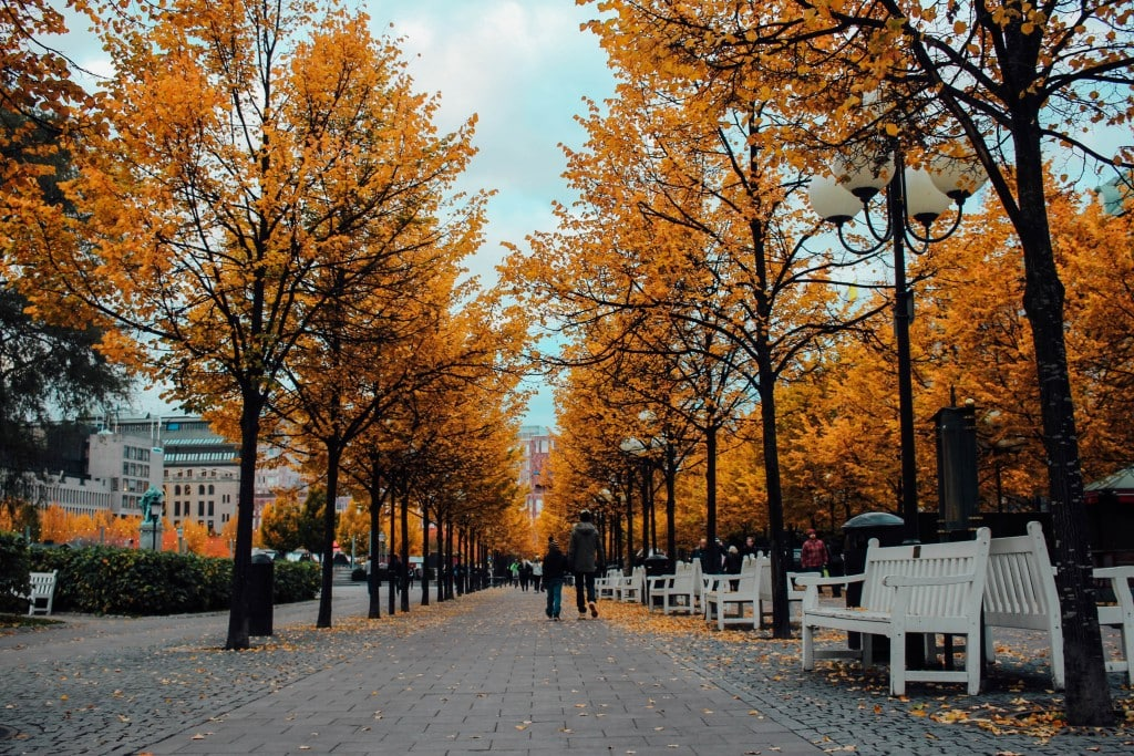 Stockholm in the Fall