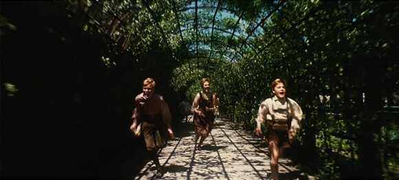 The Sound of Music Hedge Tunnel