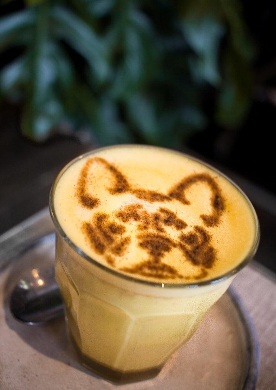 French Bulldog Latte