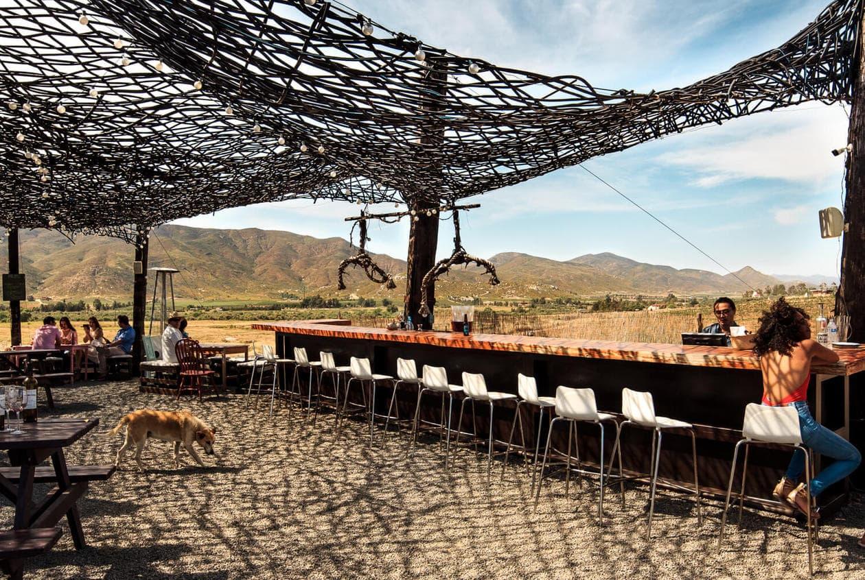 Vena Cava Winery Valle de Guadalupe  Baja California Mexico
