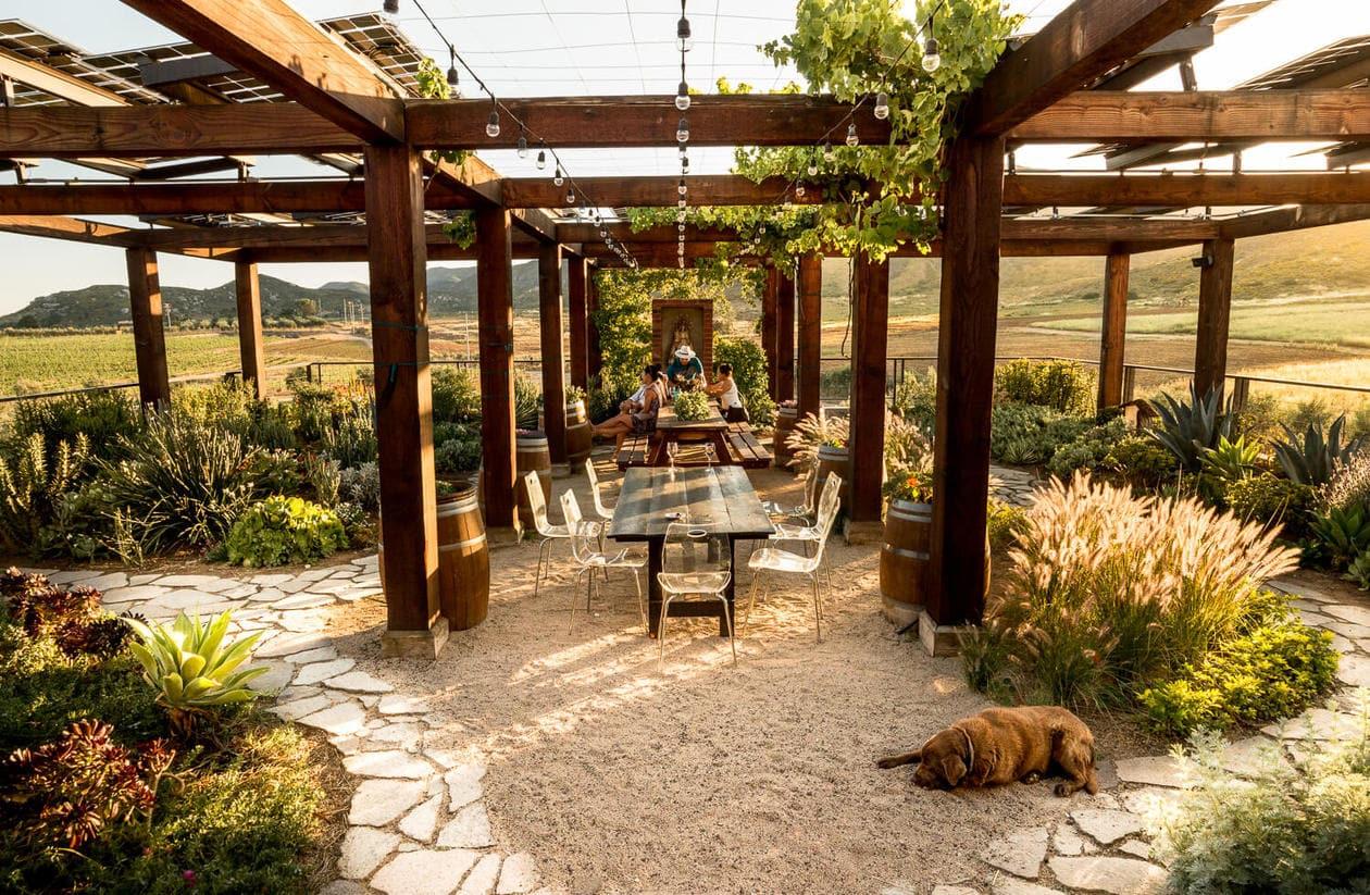 Valle de Guadalupe Wineries - Finca La Carrodilla