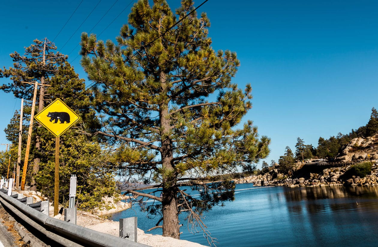Big Bear | California