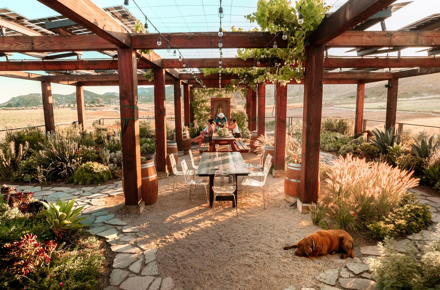 Finca La Carodilla | Valle de Guadalupe is one of the most up and coming wine regions in the world. From it's innovative designs, picturesque views and award winning wines, keep reading to discover which Valle de Guadalupe wineries you shouldn't miss while in Baja California, Mexico.