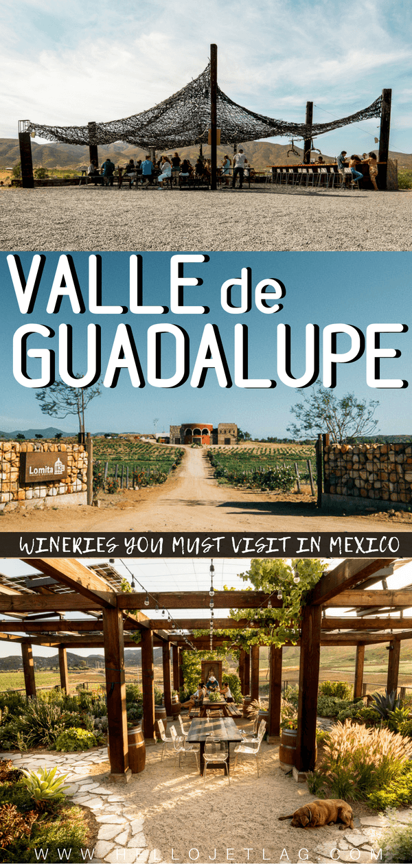 Valle de Guadalupe is one of the most new and interesting wine regions in the world. From recycled boat ceilings (vena cava) to a picture perfect outdoor patio (finca la carodilla), keep reading to discover which Valle de Guadalupe wineries you shouldn't miss while in Baja California, Mexico.