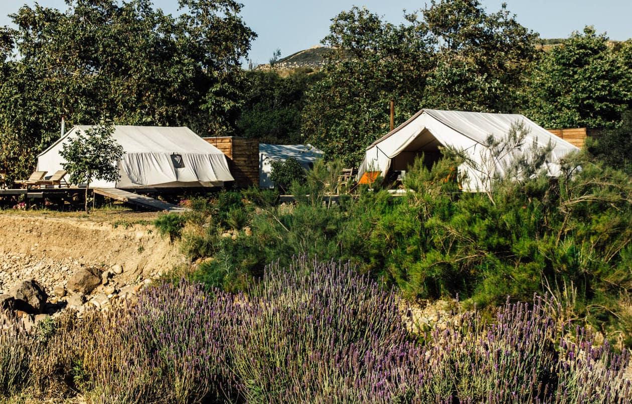 Camping Tents in Baja California | Cuatro Cuatros
