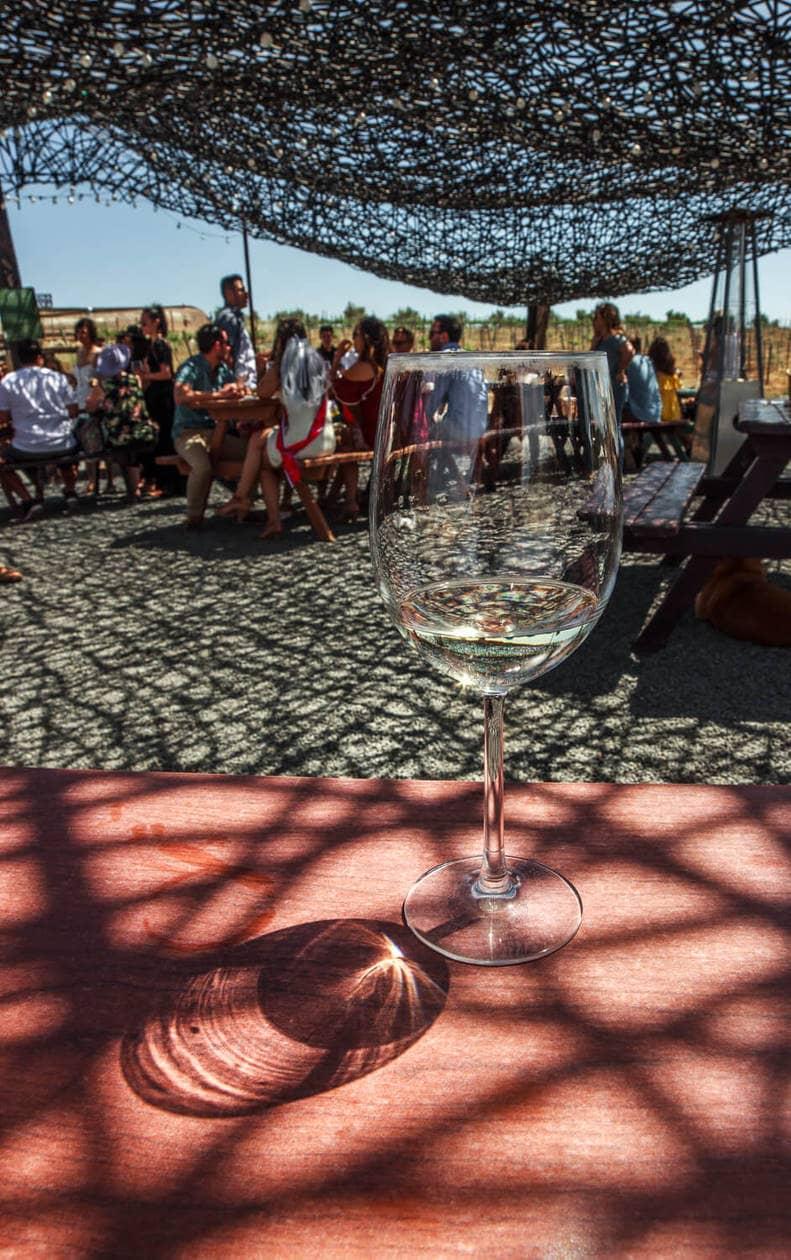 Wineries in Valle de Guadalupe   Vena Cava