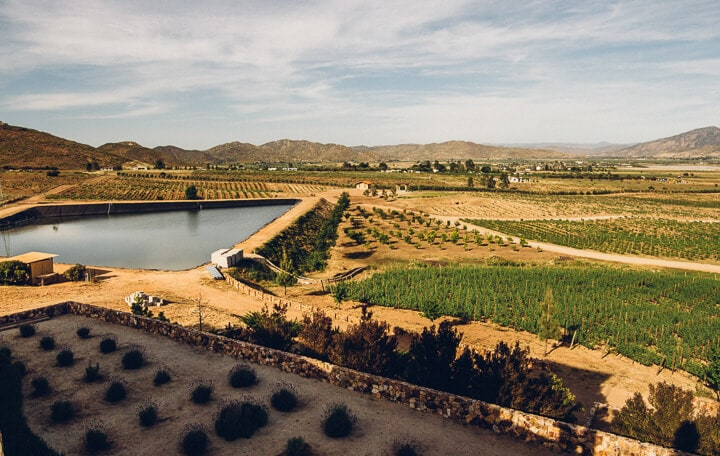 Valle de Guadalupe Baja California Mexico // Valle de Guadalupe is an up and coming wine region located in Mexico's Guadalupe Valley. With unique wineries, restaurants and hotels Valle de Guadalupe is the perfect weekend getaway from San Diego, or a great day from from Ensenada. Keep reading to discover where to eat, which wineries to visit and where to stay in Baja California's trendy hidden gem.