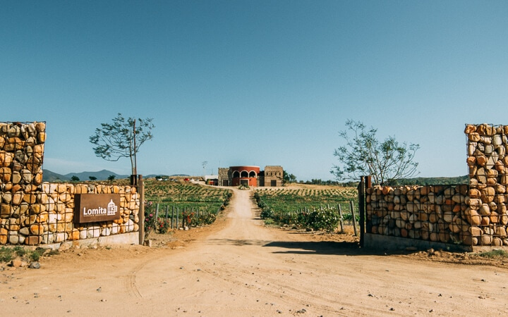 Valle De Guadalupe A Visitor S Guide To Mexico S Wine Country