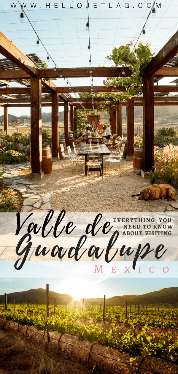 Valle de Guadalupe is an up and coming wine region located in Mexico's Guadalupe Valley. With unique wineries, restaurants and hotels Valle de Guadalupe is the perfect weekend getaway from San Diego, or a great day from from Ensenada. Keep reading to discover where to eat, which wineries to visit and where to stay in Baja California's trendy hidden gem.