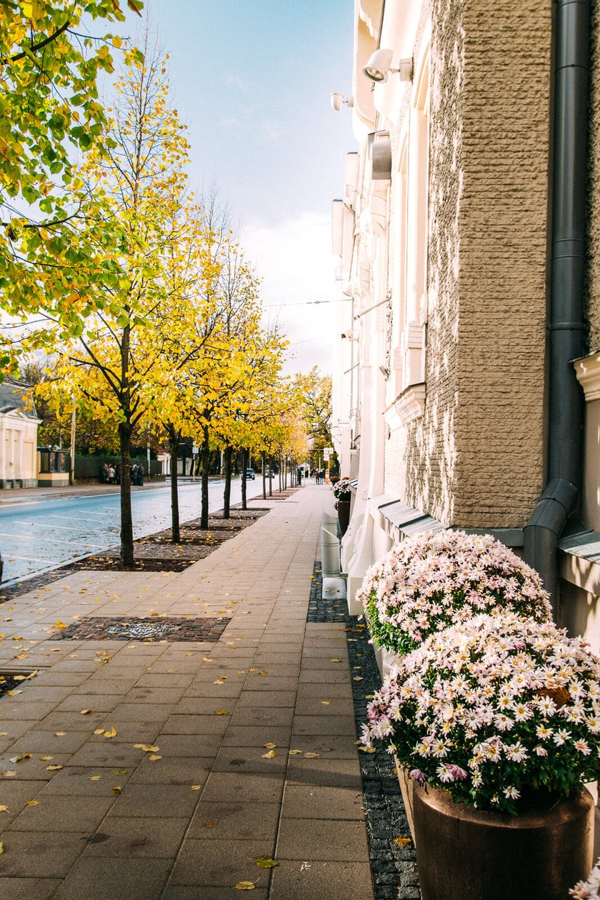 20 Pictures of Riga to Inspire You to Visit // Art Nouveau District