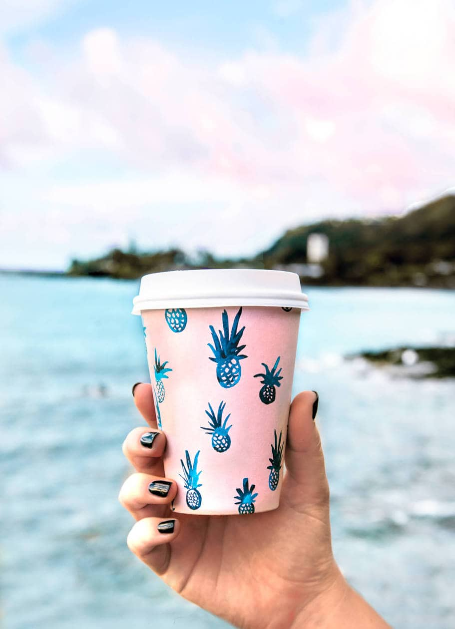 Olive and Oliver // 20 beautiful pictures of Oahu, Hawaii that capture all of the Aloha vibes; from jungle waterfalls, white sand beaches and colorful sunsets, keep reading to ignite your wanderlust and inspire your next visit to the Hawaiian Islands.