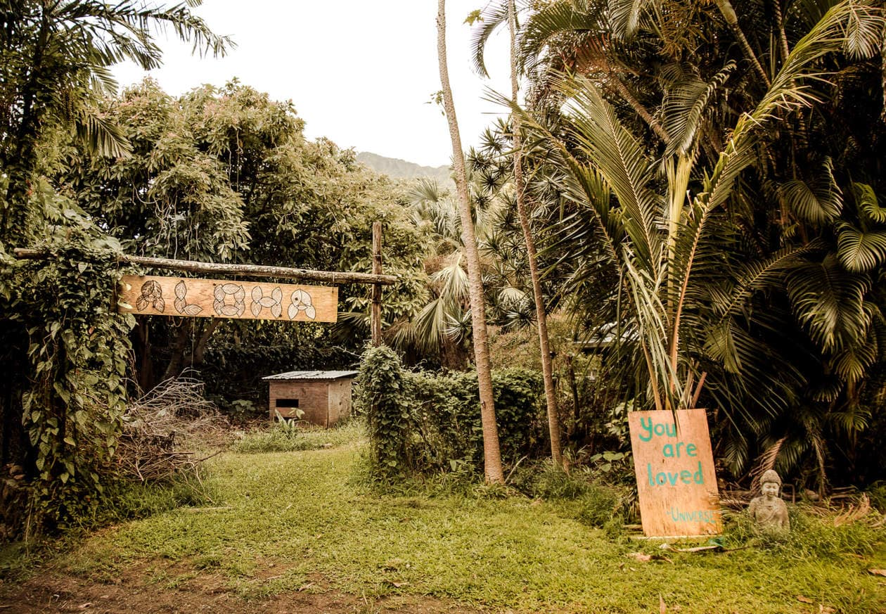 Green Rows Farm // A list of 6 things to do in Oahu, from an adventurous waterfall hike to the prettiest empty beaches. Branch away from Waikiki Beach and Diamond Head, and experience a local's guide to Oahu. Discover what to eat, secret spots, visitor tips, plus 2 of the most instagrammable hotels in Oahu.