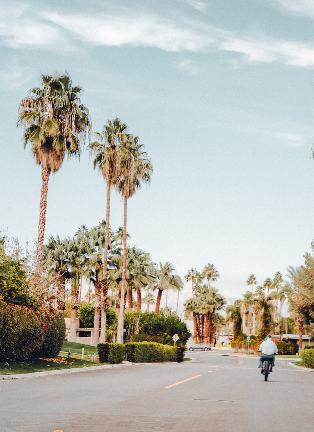 From a speakeasy style cocktail bar, $4.95 bottomless champagne and the city's most instagrammable locations, here are 15 local gems you must visit during your next Palm Springs getaway.
