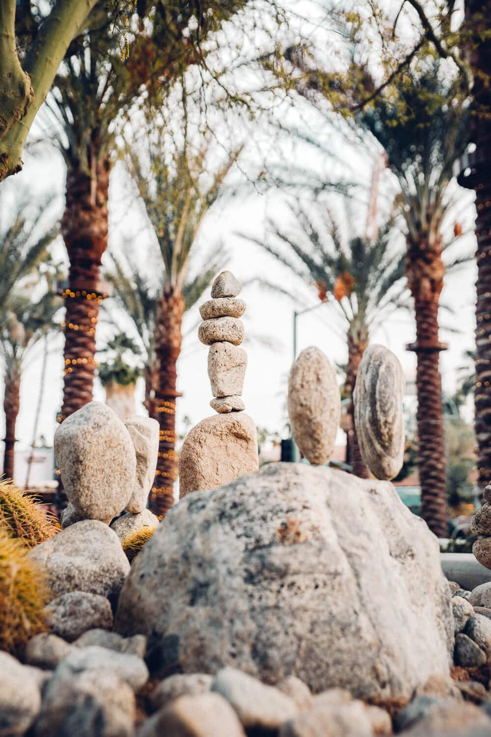 From the best local shops to a $4.95 bottomless champagne brunch, and the city's most instagrammable locations, here are 15 local gems you must visit during your next Palm Springs getaway.