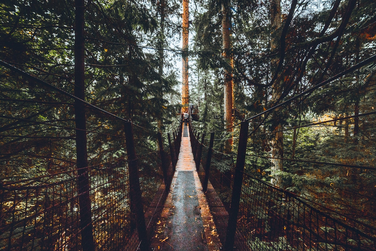 Treetop Walkway at Vancouver's Capilano park