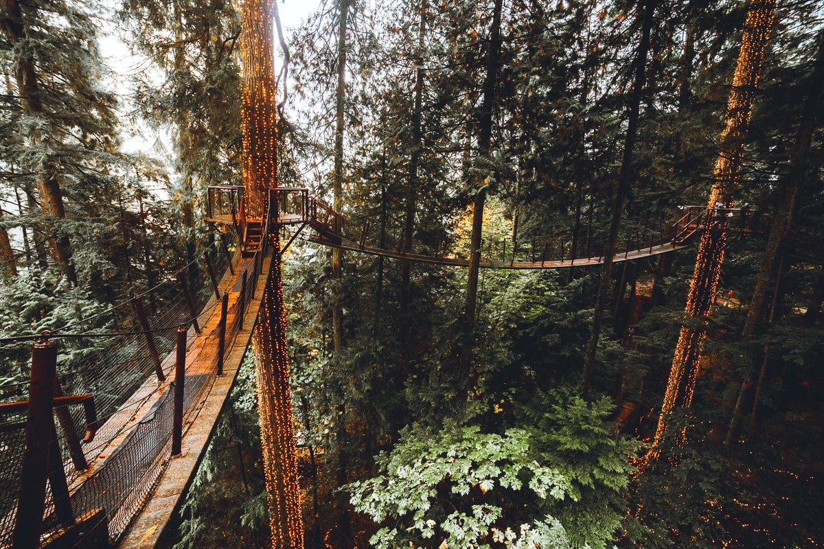 Treetop Walkway at Capilano Park