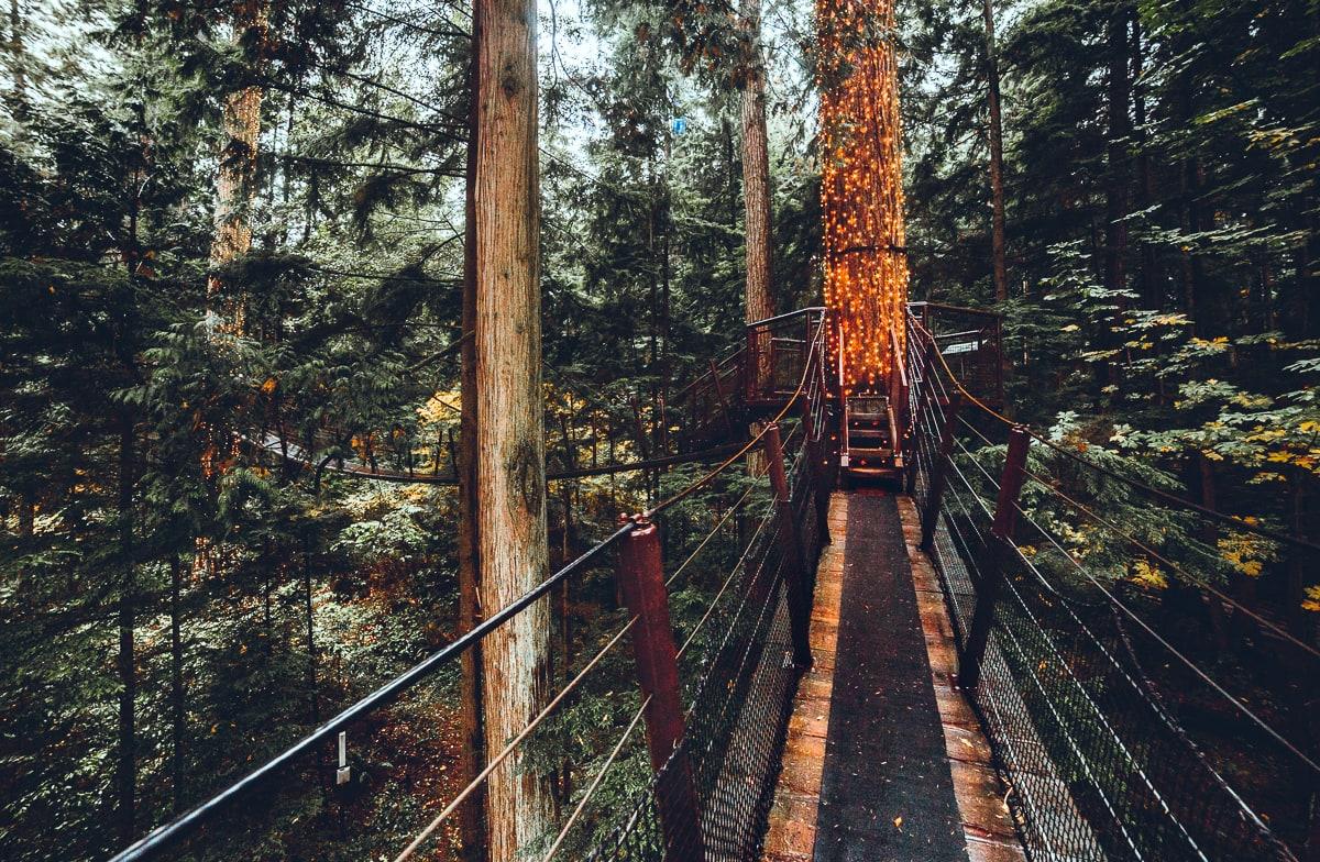 Treetop Walkway Vancouver