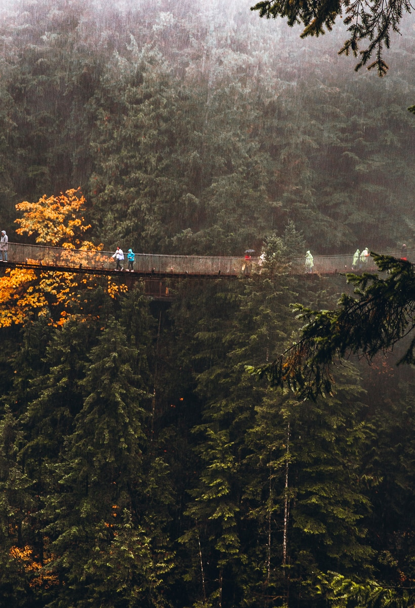 Capilano Suspension Bridge in the Rain