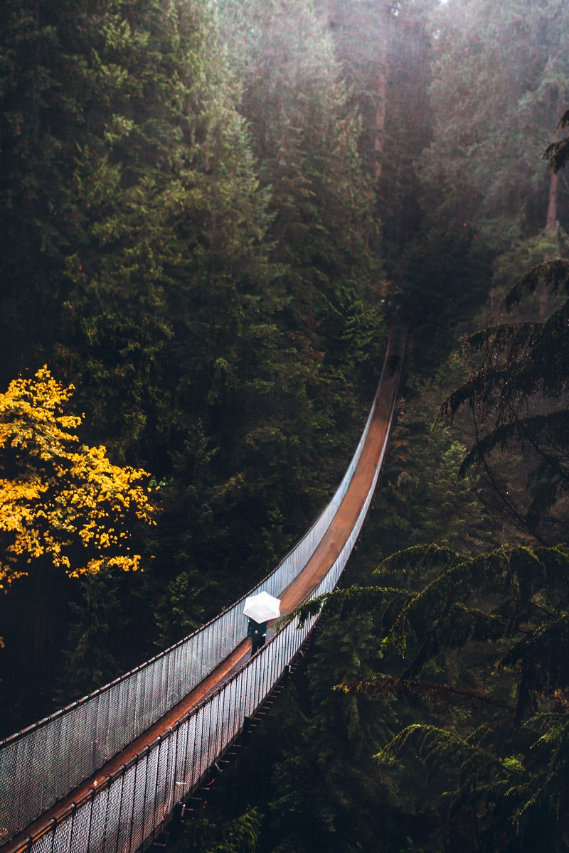 Capilano Suspension Bridge Photo