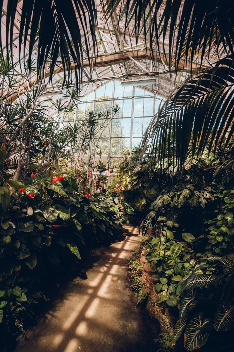 Foster Botanical Garden Conservatory