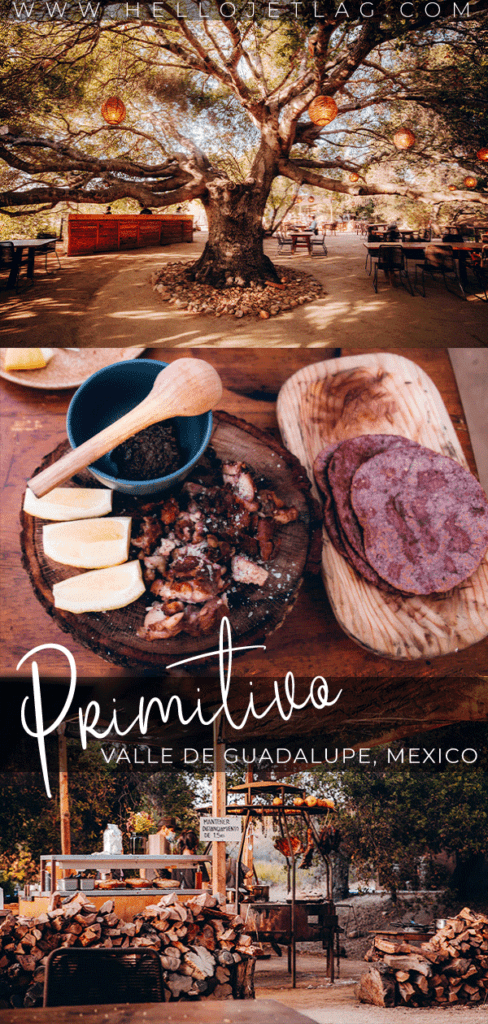 Primitivo is an open flame, outdoor restaurant in Valle de Guadalupe, Baja California (Mexico).  Located under a 300 year old oak tree, it is perfect for special occasions or a romantic dinner. Keep reading to discover what to expect, photos and more. #valledeguadalupe