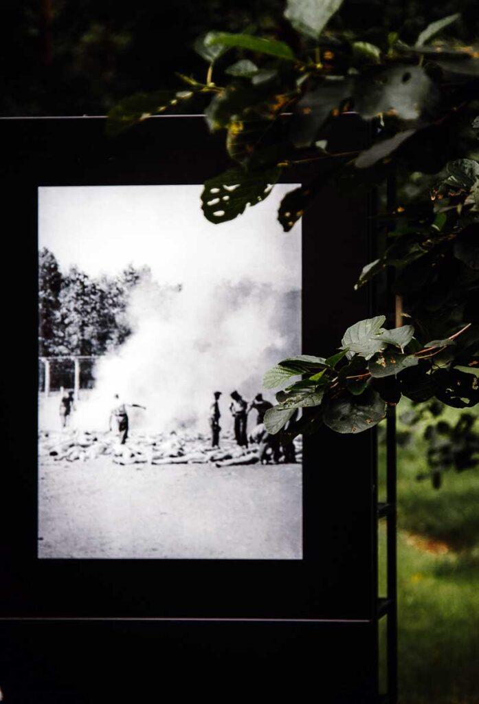 Photos from Birkenau